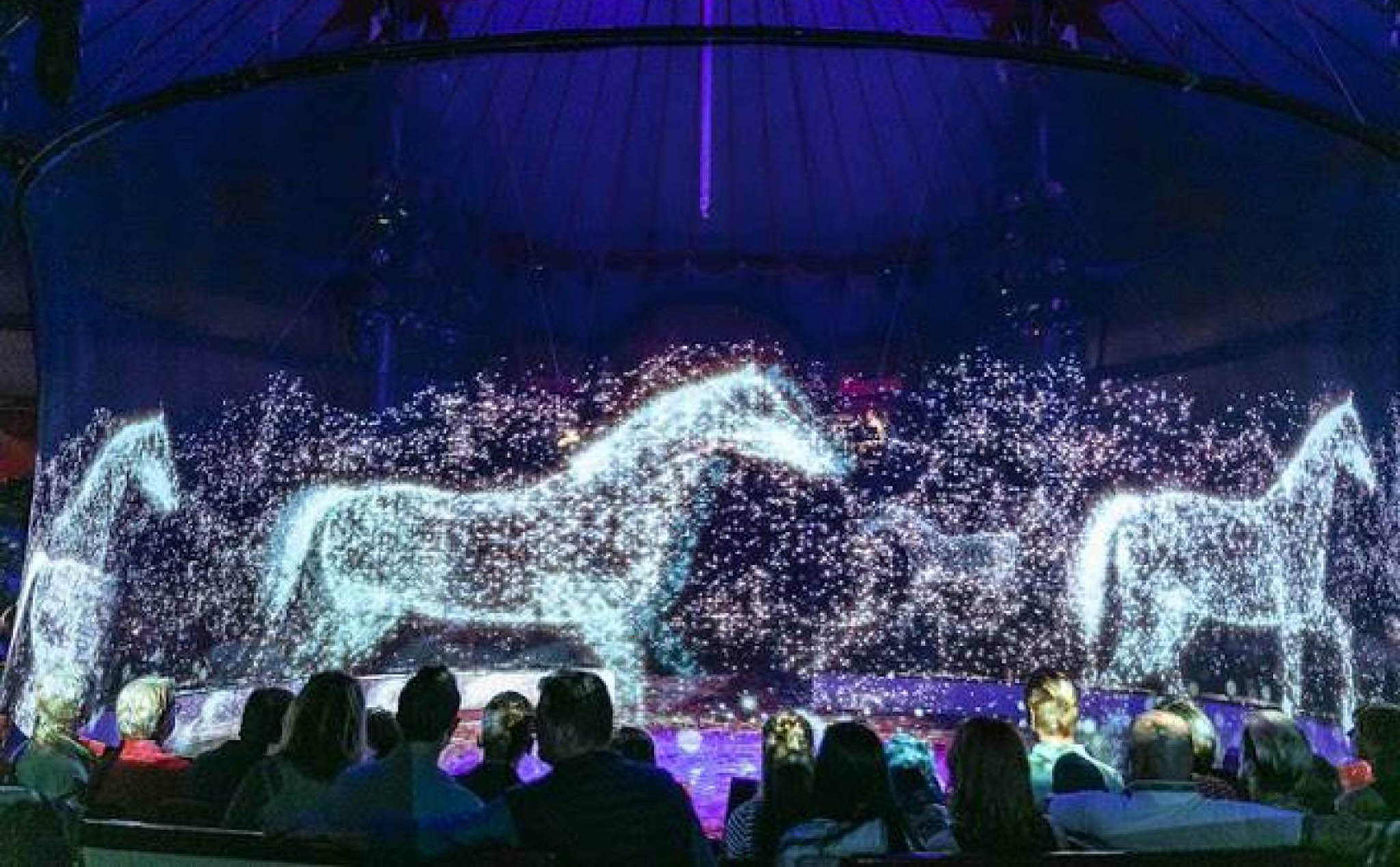 Against animal violence, the German circus turned into 3D hologram projection for the audience