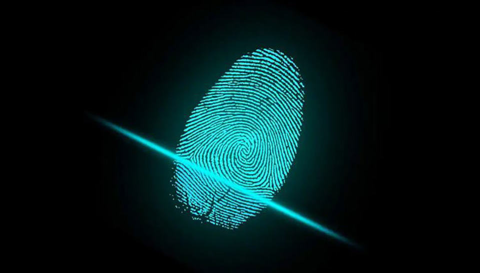 Sforum - Latest technology information page BOEDISPLAYS-2 BOE is testing the technology of integrating fingerprint and sound sensors under the new screen