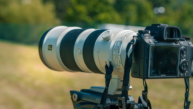 Sony 200-600mm f/5.6-6.3 G + Sony 600mm f4 GM Review | Stunning Telephoto Lenses