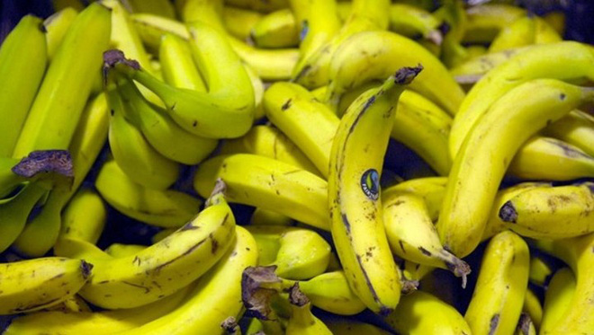 Climate change threatens to reduce global supply of bananas, will there be no more bananas for people to eat? - Picture 1.