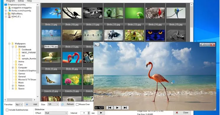 Photo Browser: Manage the editing and viewing of your photo collections