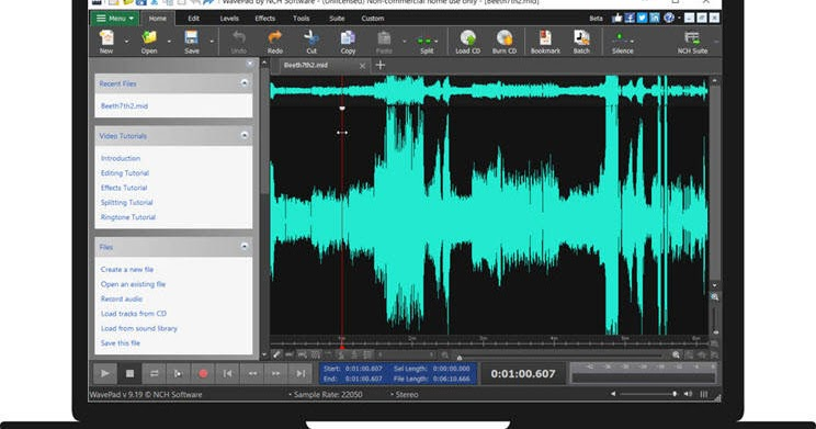 Wavepad Audio Editor: Professional audio editor