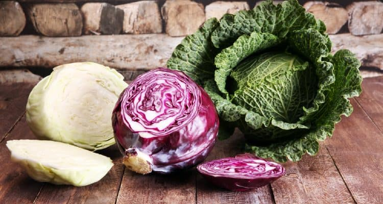 18 benefits of cabbage on health not everyone knows