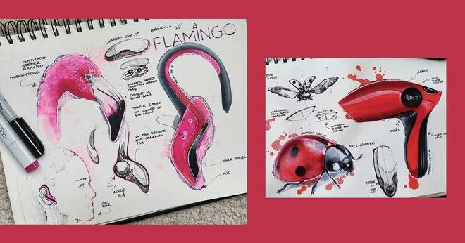 4-minute read out sketch book of 'fine luxury' animal-inspired products