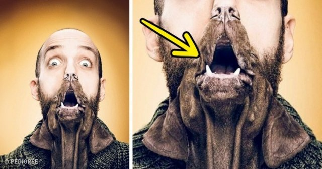 30 creative advertisements that make viewers unable to take their eyes off