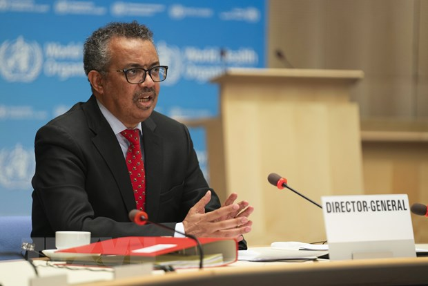 WHO, United Nations welcome the new decisions of the General Department of Information picture 1