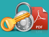 Forgot password for PDF file, here's how to open it