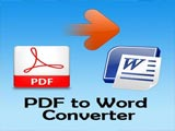 How to use PDF to Word Converter