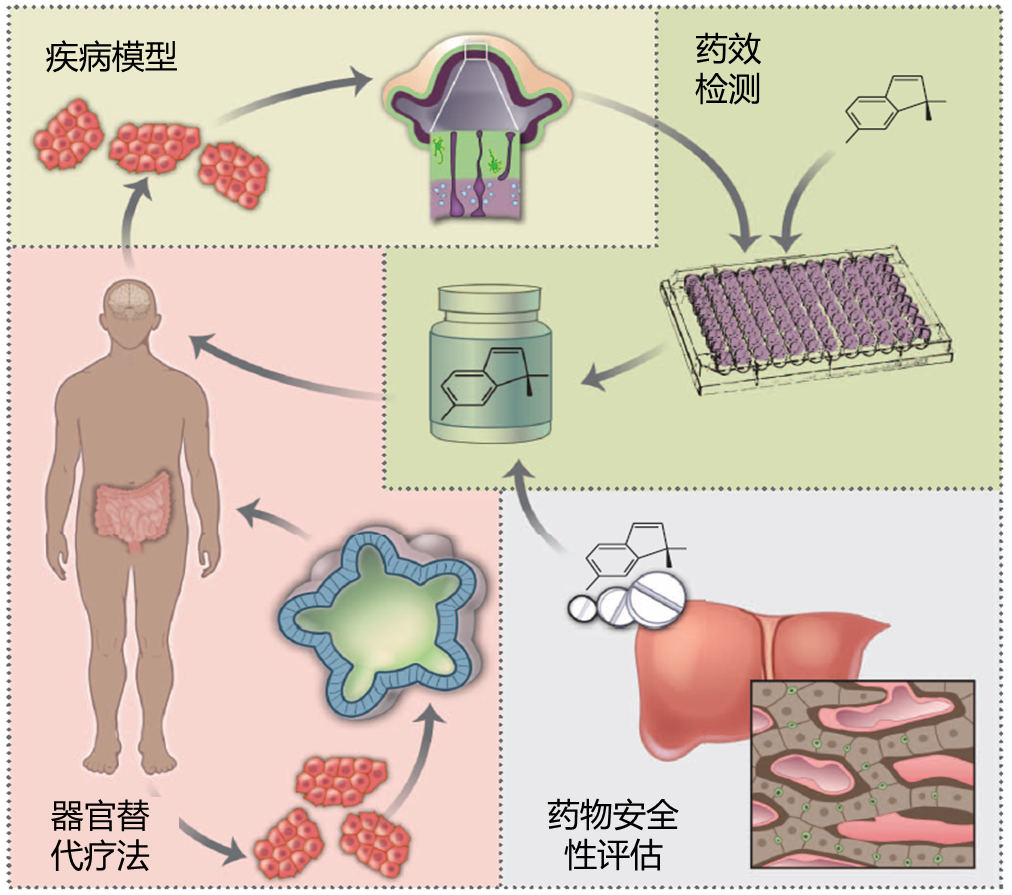"""36Kr First Release 