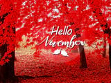 Hello November, good quotes, pictures about November