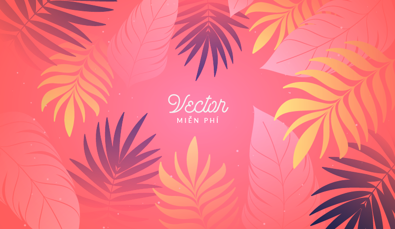 Best Free Vector Websites for Designers