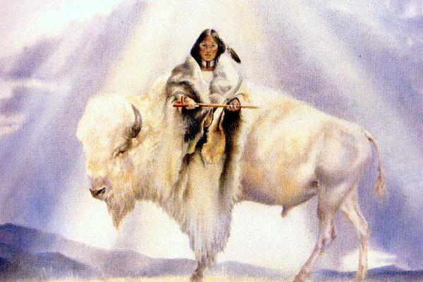 Sacred white cow goddess of the American Indians
