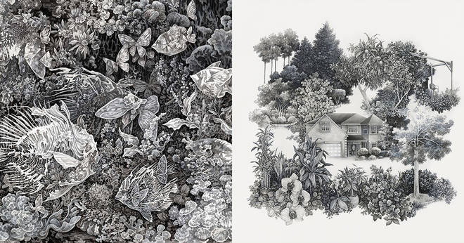 Explore other world ecosystems with Song Kang's diagonal illustrations for 3 minutes to read
