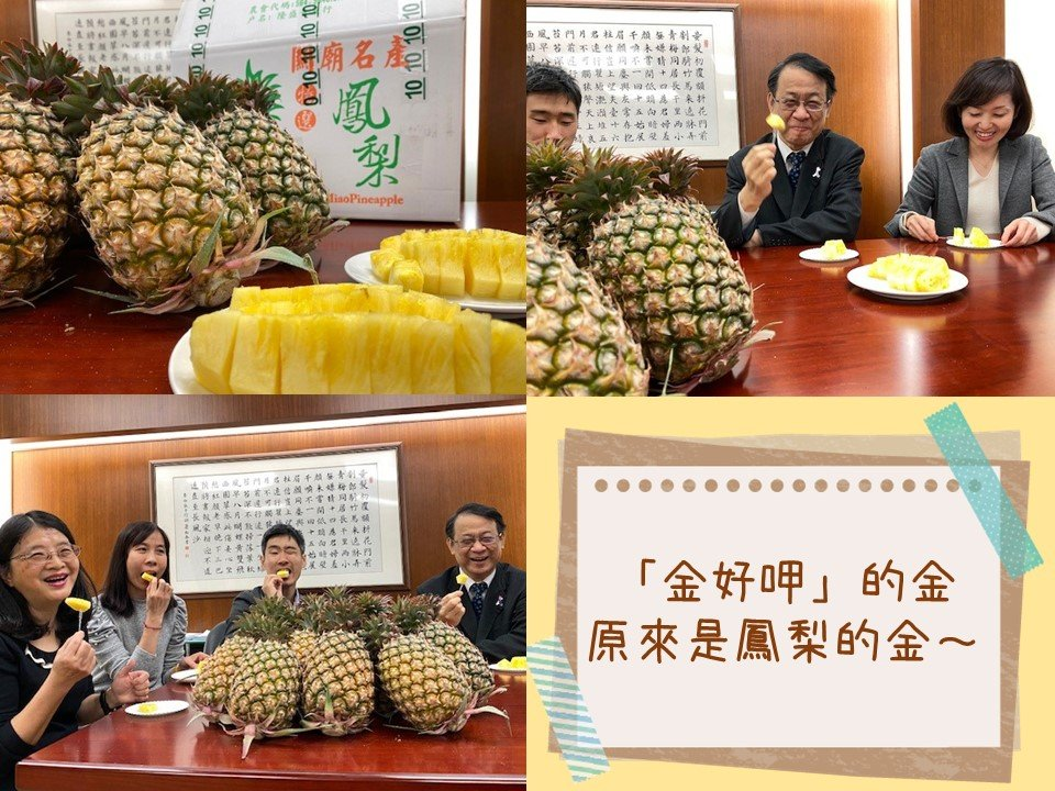 The US, Japan and Canada supported Taiwan pineapples after the Chinese ban