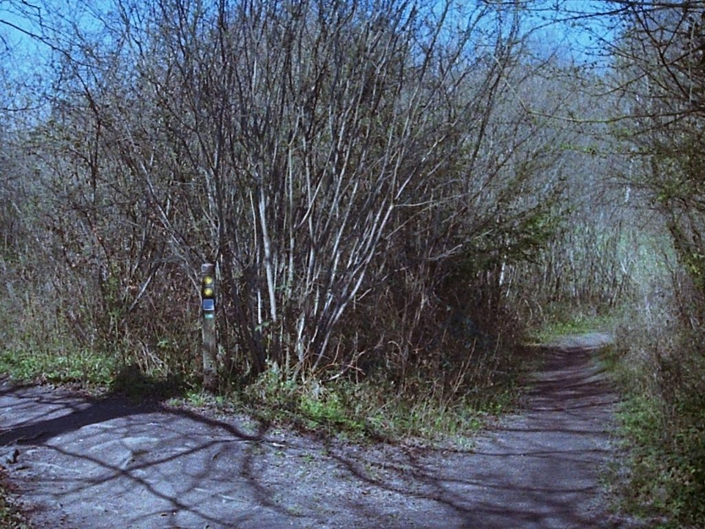 photo of a footpath trail post