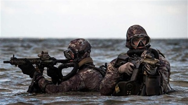 Ukraine disillusioned with taking back Crimea through... US special forces