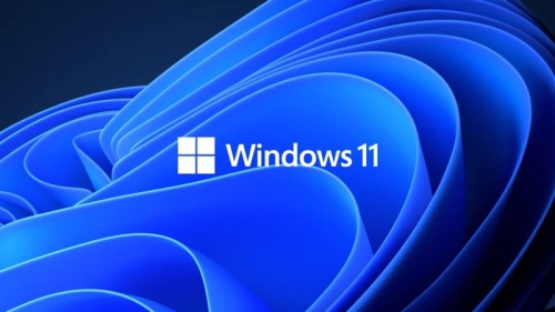 Fix 5 common common errors on Windows 11 Insider Preview version, helping you have a more stable experience trải